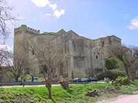 Arles et Abbaye de Montmajour