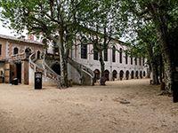Musée des vallées cévenoles et la bambouseraie